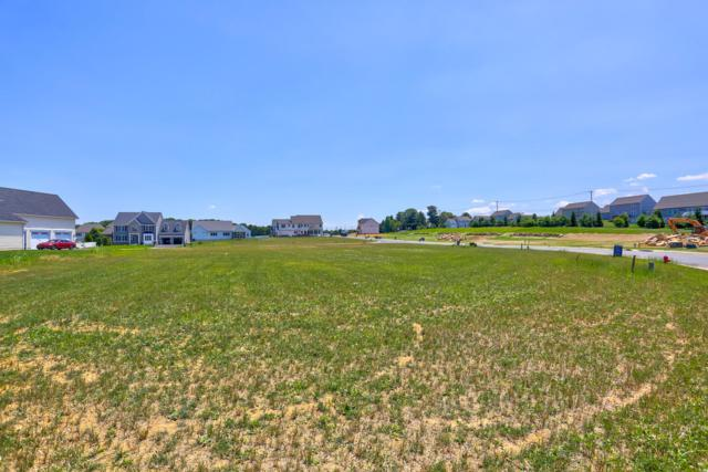 385 Amber Drive (Lot 47), LITITZ, PA 17543 (#PALA115390) :: The Heather Neidlinger Team With Berkshire Hathaway HomeServices Homesale Realty