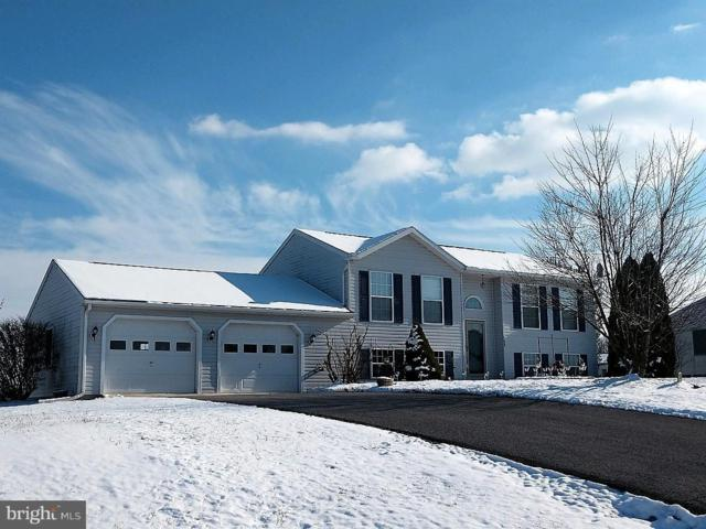 8935 Kline Drive, GREENCASTLE, PA 17225 (#PAFL141850) :: The Heather Neidlinger Team With Berkshire Hathaway HomeServices Homesale Realty
