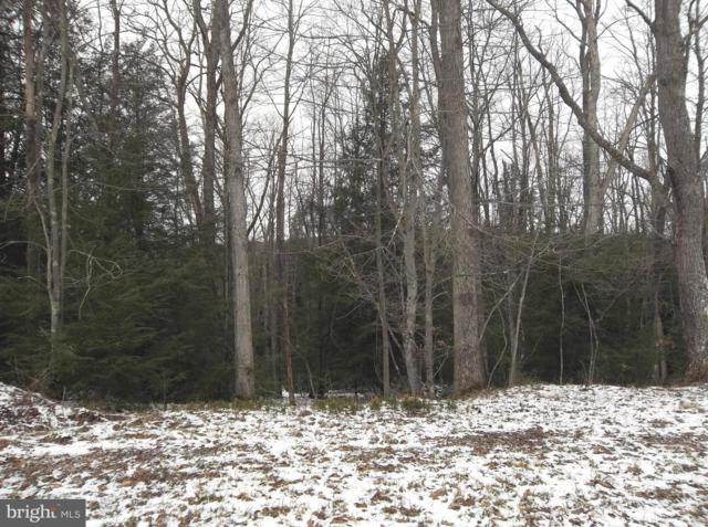 Lot 10 Yough View Drive, OAKLAND, MD 21550 (#MDGA117170) :: Eng Garcia Grant & Co.