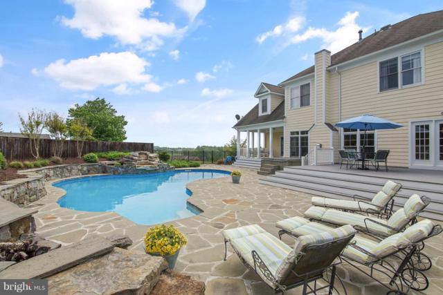8100 Worthington Manor Place, ADAMSTOWN, MD 21710 (#MDFR193760) :: Colgan Real Estate