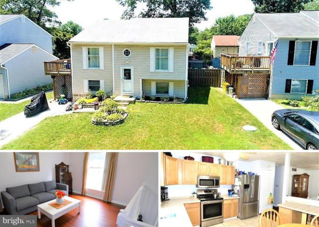 916 11TH Street, PASADENA, MD 21122 (#MDAA327104) :: The Bob & Ronna Group