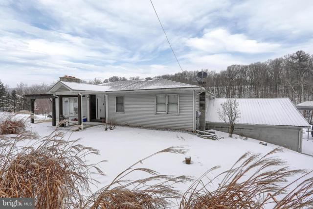 295 Barnett Woods Road, NEW BLOOMFIELD, PA 17068 (#PAPY100336) :: The Heather Neidlinger Team With Berkshire Hathaway HomeServices Homesale Realty