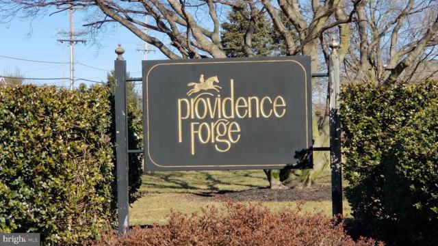 65 Providence Forge Road, ROYERSFORD, PA 19468 (#PAMC492944) :: The John Kriza Team