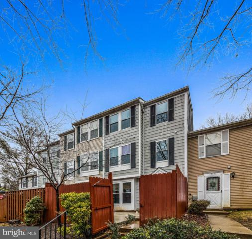 13533 Demetrias Way, GERMANTOWN, MD 20874 (#MDMC559848) :: Dart Homes