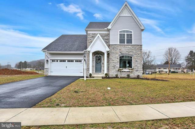2546 Camas Lane, EAST PETERSBURG, PA 17520 (#PALA120714) :: The Joy Daniels Real Estate Group
