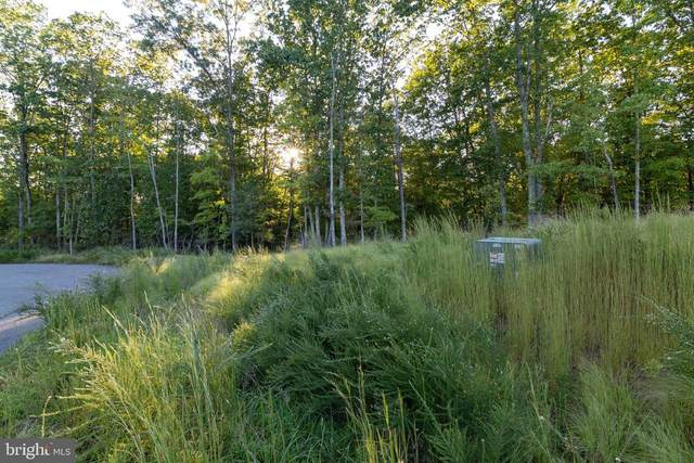 Tribal Lane, Lot 66A, STAFFORD, VA 22554 (#VAST191714) :: Pearson Smith Realty