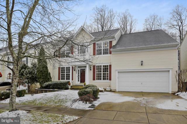1534 Hornbeam Drive, CROFTON, MD 21114 (#MDAA360262) :: The Maryland Group of Long & Foster