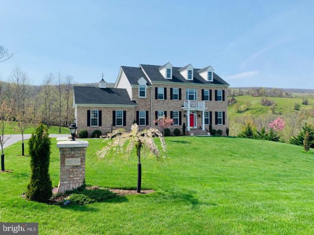 35124 Greyfriar Drive, ROUND HILL, VA 20141 (#VALO352798) :: SURE Sales Group