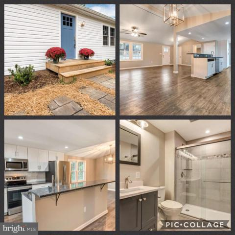 406 E D Street, BRUNSWICK, MD 21716 (#MDFR232526) :: ExecuHome Realty