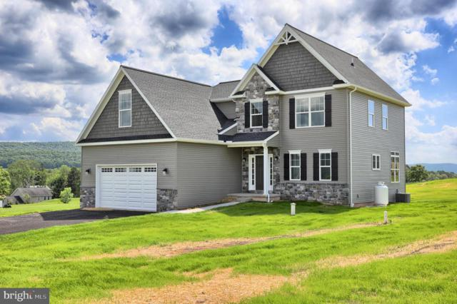 10 Pheasant Hill Drive, HALIFAX, PA 17032 (#PADA106430) :: The Heather Neidlinger Team With Berkshire Hathaway HomeServices Homesale Realty