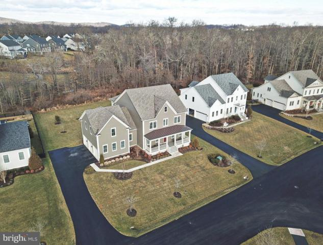 40644 Annabelle Glen Place, ALDIE, VA 20105 (#VALO353064) :: Great Falls Great Homes