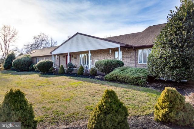 101 Indian Plantation Drive, STEVENSVILLE, MD 21666 (#MDQA136776) :: Blackwell Real Estate
