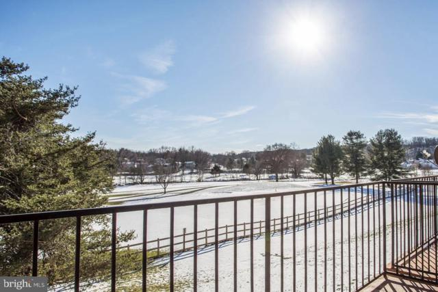 125 R Clubhouse Drive SW #9, LEESBURG, VA 20175 (#VALO353346) :: The Greg Wells Team