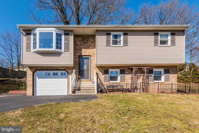 65 Black Walnut Drive, ETTERS, PA 17319 (#PAYK110400) :: The Heather Neidlinger Team With Berkshire Hathaway HomeServices Homesale Realty