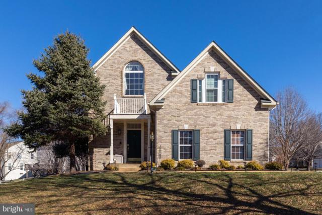 21533 Thornhill Place, BROADLANDS, VA 20148 (#VALO353940) :: Great Falls Great Homes