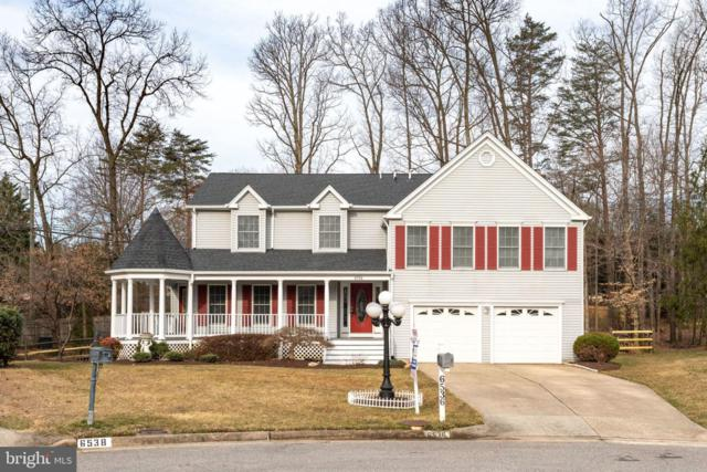 6536 Novak Woods Court, BURKE, VA 22015 (#VAFX996330) :: Tom & Cindy and Associates