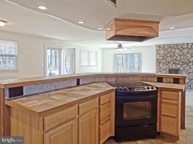 3876 Twin Oaks Drive, EDGEWATER, MD 21037 (#MDAA376260) :: Colgan Real Estate