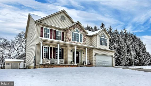 35 Bough Lane, NEW OXFORD, PA 17350 (#PAAD105284) :: The Heather Neidlinger Team With Berkshire Hathaway HomeServices Homesale Realty