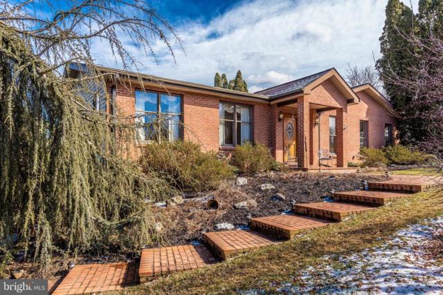 3101 Pheasant Run, IJAMSVILLE, MD 21754 (#MDFR233702) :: Colgan Real Estate