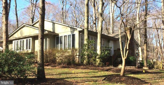 11010 Vine Court, MANASSAS, VA 20111 (#VAPW434648) :: Colgan Real Estate