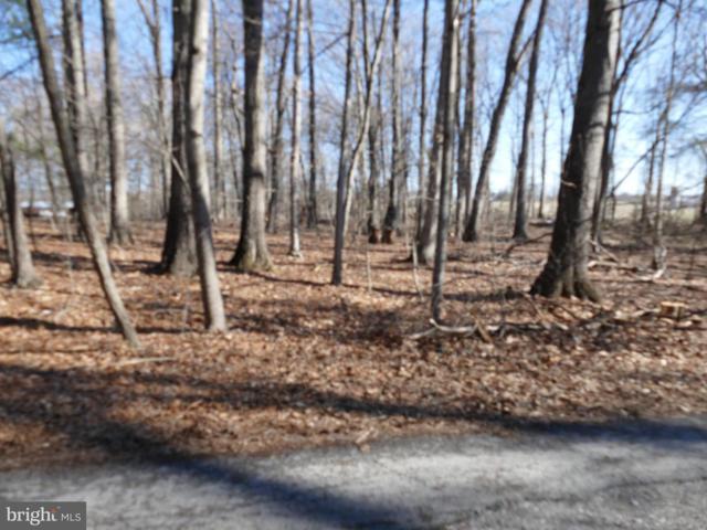 Springfield Estates Drive, RILEYVILLE, VA 22650 (#VAPA103862) :: RE/MAX Cornerstone Realty