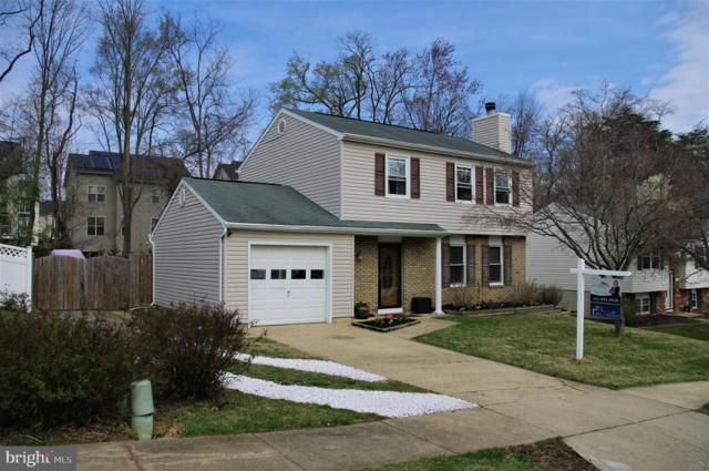 314 Ternwing Drive, ARNOLD, MD 21012 (#MDAA377246) :: Colgan Real Estate
