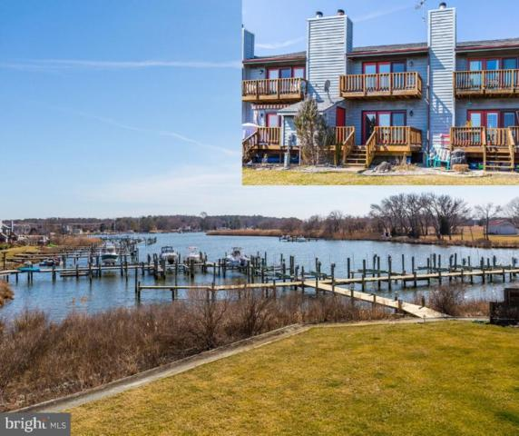 903 Marion Quimby Drive, STEVENSVILLE, MD 21666 (#MDQA137124) :: The Riffle Group of Keller Williams Select Realtors