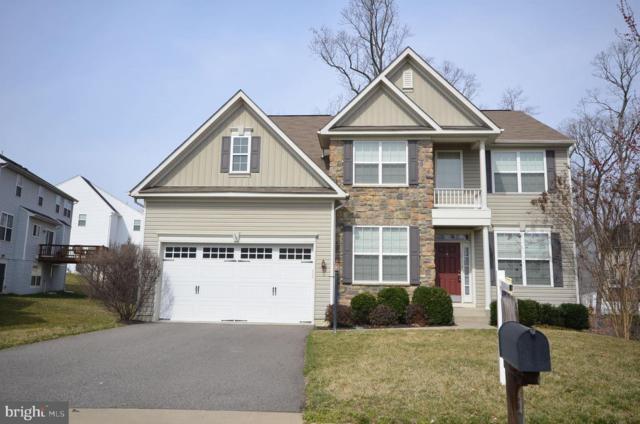 16114 Hawkwatch Court, WOODBRIDGE, VA 22191 (#VAPW435178) :: Great Falls Great Homes