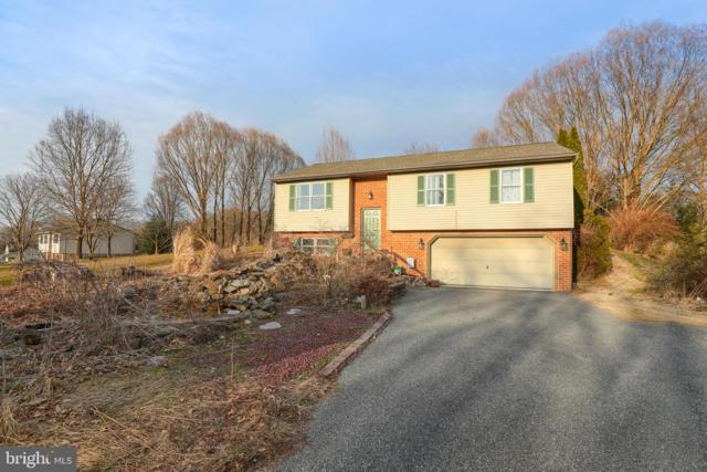 161 Covered Bridge Road, ELIZABETHTOWN, PA 17022 (#PALA124156) :: The Joy Daniels Real Estate Group
