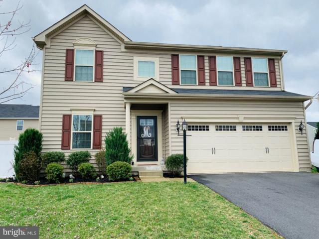 12024 Live Oak Drive, CULPEPER, VA 22701 (#VACU134960) :: Colgan Real Estate