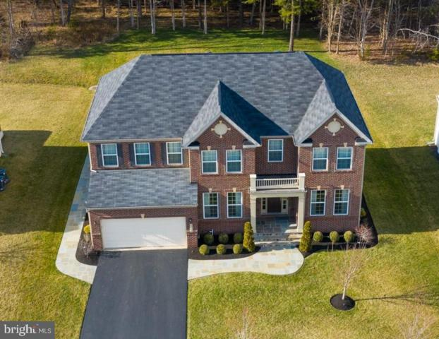 42170 Cameron Parish Drive, ASHBURN, VA 20148 (#VALO356166) :: Bic DeCaro & Associates