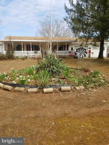 2770 Green Spring Road, WINCHESTER, VA 22603 (#VAFV145608) :: Remax Preferred | Scott Kompa Group