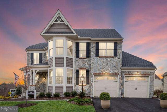 17289 Creekside Green Place Place, ROUND HILL, VA 20141 (#VALO356490) :: Pearson Smith Realty