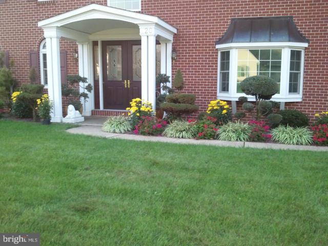 420 Spring Hollow Drive, NEW HOLLAND, PA 17557 (#PALA124770) :: Colgan Real Estate