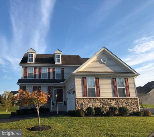 315 Summer Squall Court, HAVRE DE GRACE, MD 21078 (#MDHR225830) :: Great Falls Great Homes