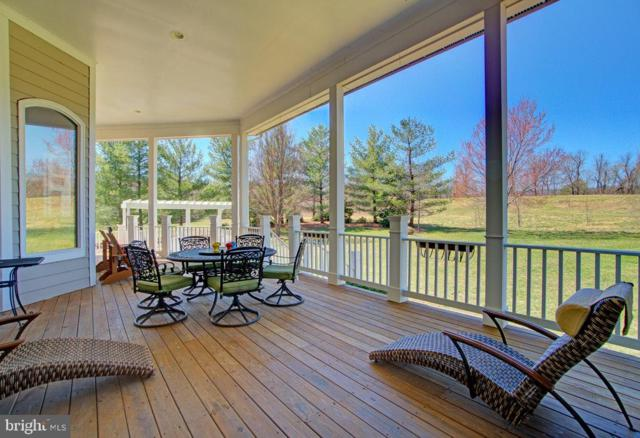 17811 Stoneleigh Drive, ROUND HILL, VA 20141 (#VALO378702) :: ExecuHome Realty