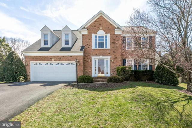 20721 Edgebrook Court, ASHBURN, VA 20147 (#VALO378862) :: Colgan Real Estate