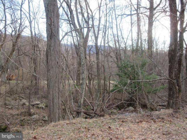LOT 2A3 Smith Run Road, BENTONVILLE, VA 22610 (#VAWR136192) :: The Miller Team