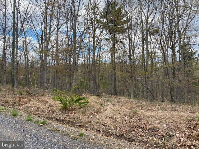Colonial Drive, BERKELEY SPRINGS, WV 25411 (#WVMO115038) :: Revol Real Estate