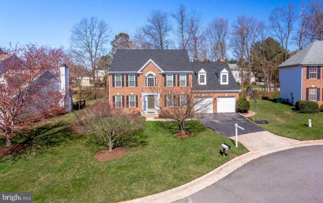 12906 Cinnamon Oaks Court, HERNDON, VA 20171 (#VAFX1049722) :: Colgan Real Estate