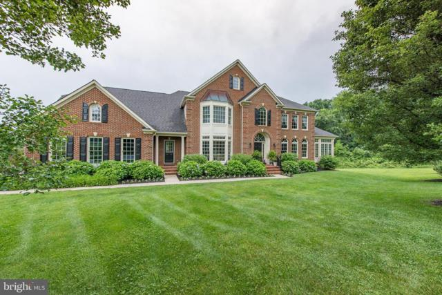 11421 Butterfruit Way, ELLICOTT CITY, MD 21042 (#MDHW260924) :: The Gus Anthony Team