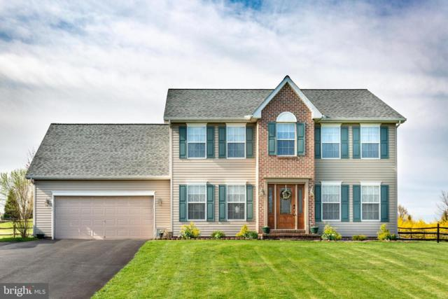 100 E Summit Drive, LITTLESTOWN, PA 17340 (#PAAD106184) :: The Heather Neidlinger Team With Berkshire Hathaway HomeServices Homesale Realty
