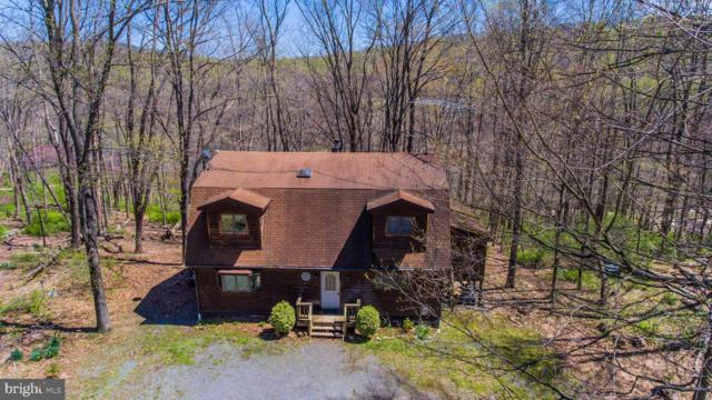 33 Bluebird Lane, BERKELEY SPRINGS, WV 25411 (#WVMO115108) :: Lee Tessier Team