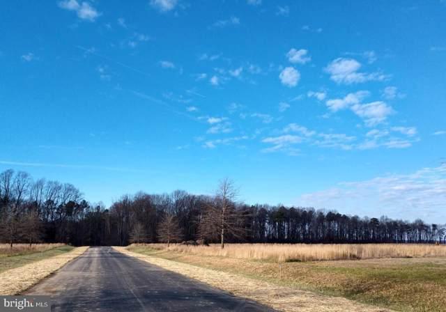 0 Hickory Cove Road, HURLOCK, MD 21643 (#MDDO123330) :: Bob Lucido Team of Keller Williams Integrity