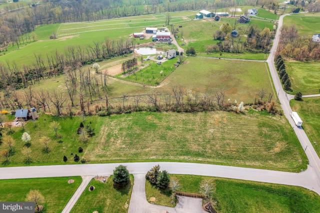 140 Apple Tree Road, HUMMELSTOWN, PA 17036 (#PADA109134) :: TeamPete Realty Services, Inc