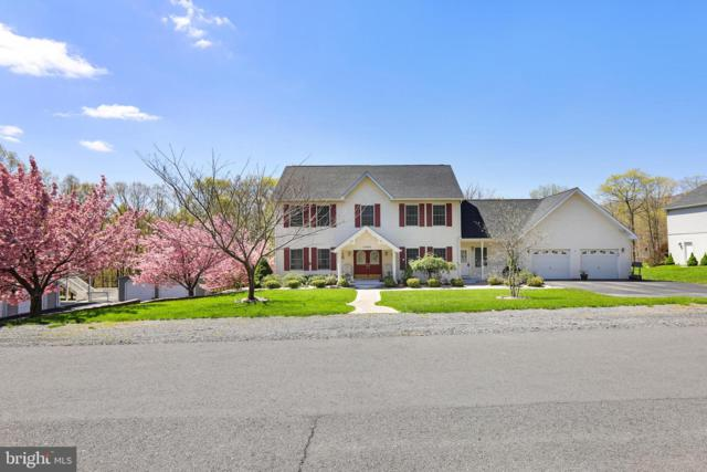 16902 Mt Club Avenue, RAWLINGS, MD 21557 (#MDAL131372) :: Keller Williams Pat Hiban Real Estate Group