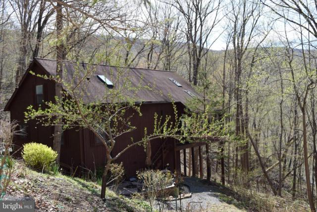 785 Stellar Way, BERKELEY SPRINGS, WV 25411 (#WVMO115154) :: Pearson Smith Realty