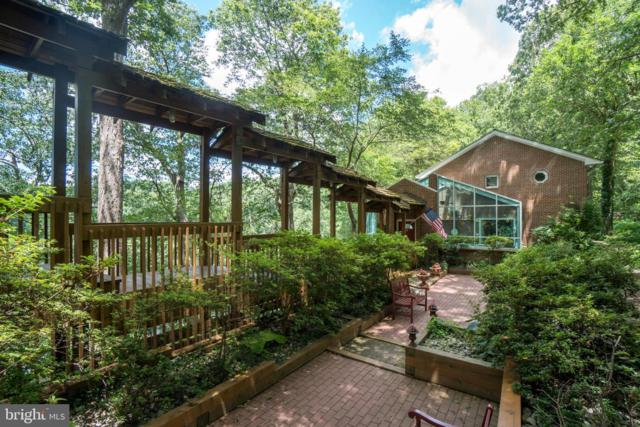 1020 Millwood Road, GREAT FALLS, VA 22066 (#VAFX1053972) :: Great Falls Great Homes