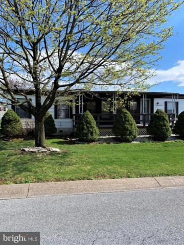 87 Meadow Run Place, HARRISBURG, PA 17112 (#PADA109240) :: Flinchbaugh & Associates