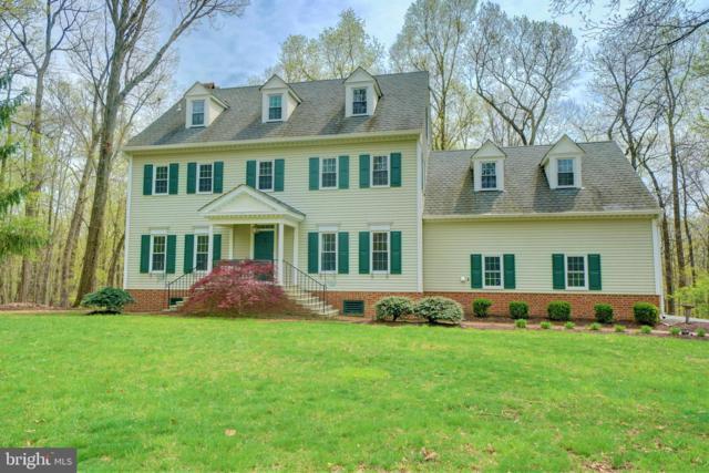 12126 Merricks Court, MONROVIA, MD 21770 (#MDFR244564) :: Jim Bass Group of Real Estate Teams, LLC
